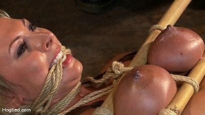 Photo number 5 from Skylar Price: Blond Bombshell Bamboo Bound  shot for Hogtied on Kink.com. Featuring Skylar Price in hardcore BDSM & Fetish porn.