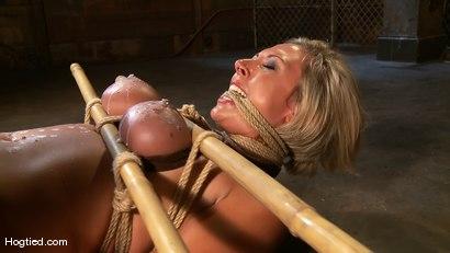 Photo number 7 from Skylar Price: Blond Bombshell Bamboo Bound  shot for Hogtied on Kink.com. Featuring Skylar Price in hardcore BDSM & Fetish porn.