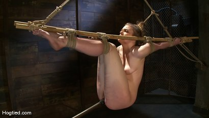 Photo number 8 from Welcome the new Category 5 girl Ivy Mokhov shot for Hogtied on Kink.com. Featuring Ivy Mokhov in hardcore BDSM & Fetish porn.