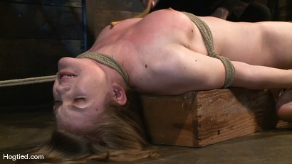 Photo number 12 from Welcome the new Category 5 girl Ivy Mokhov shot for Hogtied on Kink.com. Featuring Ivy Mokhov in hardcore BDSM & Fetish porn.