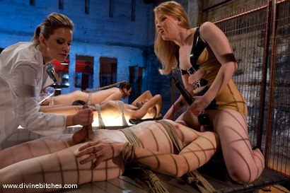 Photo number 7 from Three Slaveboys Milked shot for Divine Bitches on Kink.com. Featuring Mickey Mod, Maitresse Madeline Marlowe , David Chase, Madison Young and Martin Lorenzo in hardcore BDSM & Fetish porn.