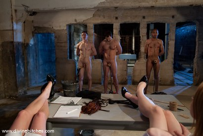 Photo number 3 from Three Slaveboys Milked shot for Divine Bitches on Kink.com. Featuring Mickey Mod, Maitresse Madeline Marlowe , David Chase, Madison Young and Martin Lorenzo in hardcore BDSM & Fetish porn.