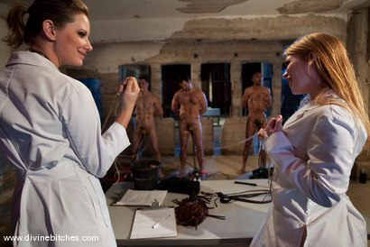 Photo number 15 from Three Slaveboys Milked shot for Divine Bitches on Kink.com. Featuring Mickey Mod, Maitresse Madeline Marlowe , David Chase, Madison Young and Martin Lorenzo in hardcore BDSM & Fetish porn.