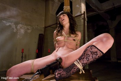 Photo number 11 from Amateur Casting Couch: Ivy Brook shot for Hogtied on Kink.com. Featuring Ivy Brook in hardcore BDSM & Fetish porn.