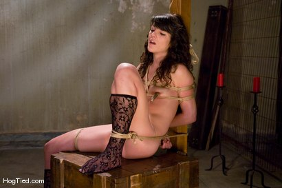 Photo number 12 from Amateur Casting Couch: Ivy Brook shot for Hogtied on Kink.com. Featuring Ivy Brook in hardcore BDSM & Fetish porn.