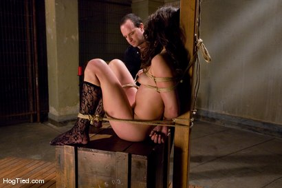 Photo number 6 from Amateur Casting Couch: Ivy Brook shot for Hogtied on Kink.com. Featuring Ivy Brook in hardcore BDSM & Fetish porn.
