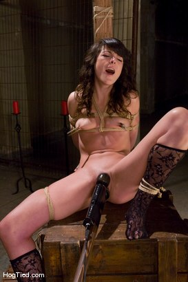 Photo number 10 from Amateur Casting Couch: Ivy Brook shot for Hogtied on Kink.com. Featuring Ivy Brook in hardcore BDSM & Fetish porn.