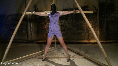 Photo number 1 from Dylan's Bamboo Bondage Dilemma shot for Hogtied on Kink.com. Featuring Dylan Ryan in hardcore BDSM & Fetish porn.