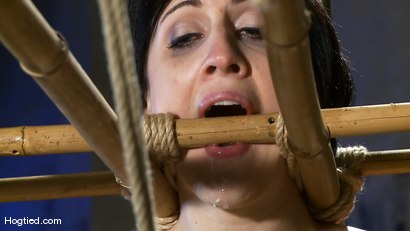 Photo number 12 from Dylan's Bamboo Bondage Dilemma shot for Hogtied on Kink.com. Featuring Dylan Ryan in hardcore BDSM & Fetish porn.