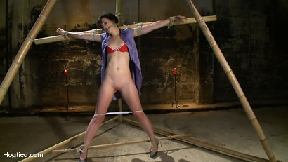 Photo number 2 from Dylan's Bamboo Bondage Dilemma shot for Hogtied on Kink.com. Featuring Dylan Ryan in hardcore BDSM & Fetish porn.