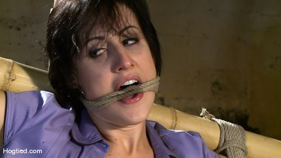 Photo number 4 from Dylan's Bamboo Bondage Dilemma shot for Hogtied on Kink.com. Featuring Dylan Ryan in hardcore BDSM & Fetish porn.