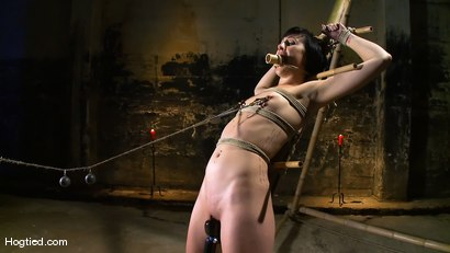 Photo number 8 from Dylan's Bamboo Bondage Dilemma shot for Hogtied on Kink.com. Featuring Dylan Ryan in hardcore BDSM & Fetish porn.