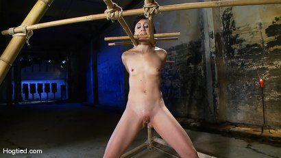 Photo number 10 from Dylan's Bamboo Bondage Dilemma shot for Hogtied on Kink.com. Featuring Dylan Ryan in hardcore BDSM & Fetish porn.