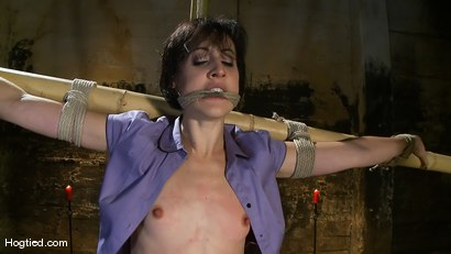 Photo number 3 from Dylan's Bamboo Bondage Dilemma shot for Hogtied on Kink.com. Featuring Dylan Ryan in hardcore BDSM & Fetish porn.