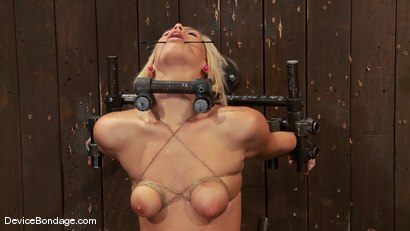 Photo number 10 from Tara Lynn Fox<br> Our hot little 19yr old is back and trapped on a Sybian shot for Device Bondage on Kink.com. Featuring Tara Lynn Foxx in hardcore BDSM & Fetish porn.