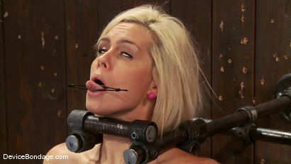 Photo number 12 from Tara Lynn Fox<br> Our hot little 19yr old is back and trapped on a Sybian shot for Device Bondage on Kink.com. Featuring Tara Lynn Foxx in hardcore BDSM & Fetish porn.