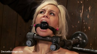 Photo number 6 from Tara Lynn Fox<br> Our hot little 19yr old is back and trapped on a Sybian shot for Device Bondage on Kink.com. Featuring Tara Lynn Foxx in hardcore BDSM & Fetish porn.