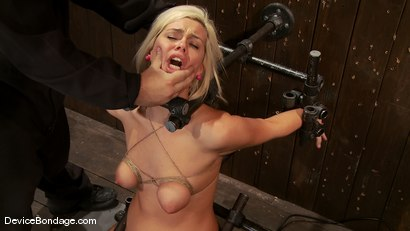 Photo number 7 from Tara Lynn Fox<br> Our hot little 19yr old is back and trapped on a Sybian shot for Device Bondage on Kink.com. Featuring Tara Lynn Foxx in hardcore BDSM & Fetish porn.