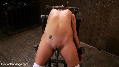 Photo number 6 from Katie Summers<br> Pigtails and nipple torture. Sweet shot for Device Bondage on Kink.com. Featuring Katie Summers in hardcore BDSM & Fetish porn.