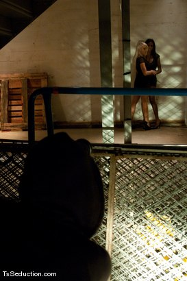 Photo number 1 from Natassia Dream, Lorelei Lee <br> Stalking the Stalker shot for TS Seduction on Kink.com. Featuring Natassia Dreams, Lorelei Lee and Mickey Mod in hardcore BDSM & Fetish porn.