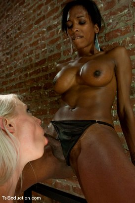 Photo number 7 from Natassia Dream, Lorelei Lee <br> Stalking the Stalker shot for TS Seduction on Kink.com. Featuring Natassia Dreams, Lorelei Lee and Mickey Mod in hardcore BDSM & Fetish porn.