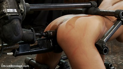 Photo number 6 from Alicia Stone<br>Girl next door, double fucked! shot for Device Bondage on Kink.com. Featuring Alicia Stone in hardcore BDSM & Fetish porn.