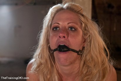 Photo number 12 from The Training of Holly Heart Day One shot for thetrainingofo on Kink.com. Featuring Holly Heart and Maestro in hardcore BDSM & Fetish porn.
