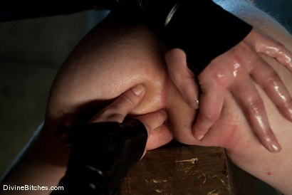 Photo number 7 from FEMDOM 2.0 shot for Divine Bitches on Kink.com. Featuring Maitresse Madeline Marlowe  and Kade in hardcore BDSM & Fetish porn.