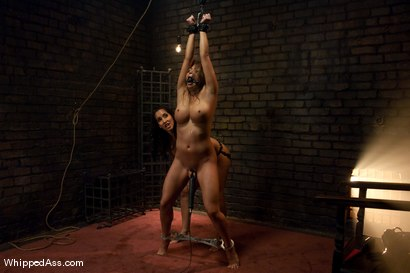 Photo number 10 from Mia Lelani: Dirty Whore shot for Whipped Ass on Kink.com. Featuring Isis Love and Mia Lelani in hardcore BDSM & Fetish porn.