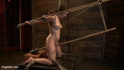 Photo number 8 from Charlotte submits to the bamboo... shot for Hogtied on Kink.com. Featuring John Henry and Charlotte Vale in hardcore BDSM & Fetish porn.