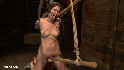 Photo number 10 from Charlotte submits to the bamboo... shot for Hogtied on Kink.com. Featuring John Henry and Charlotte Vale in hardcore BDSM & Fetish porn.