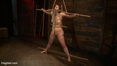 Photo number 11 from Charlotte submits to the bamboo... shot for Hogtied on Kink.com. Featuring John Henry and Charlotte Vale in hardcore BDSM & Fetish porn.