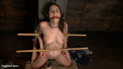 Photo number 2 from Charlotte submits to the bamboo... shot for Hogtied on Kink.com. Featuring John Henry and Charlotte Vale in hardcore BDSM & Fetish porn.