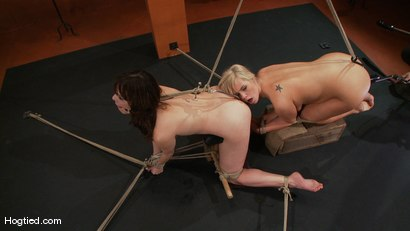 Photo number 9 from Bondage Bimbos Bamboo Bound shot for Hogtied on Kink.com. Featuring Dana DeArmond and Tara Lynn Foxx in hardcore BDSM & Fetish porn.