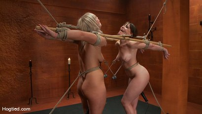 Photo number 6 from Bondage Bimbos Bamboo Bound shot for Hogtied on Kink.com. Featuring Dana DeArmond and Tara Lynn Foxx in hardcore BDSM & Fetish porn.