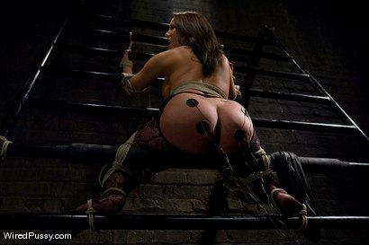 Photo number 2 from Kelly and her Divine Ass shot for Wired Pussy on Kink.com. Featuring Isis Love and Kelly Divine in hardcore BDSM & Fetish porn.
