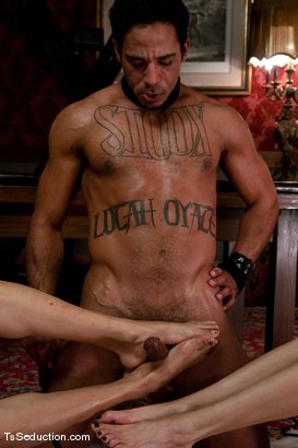 Photo number 14 from Johanna B. Paris, Lobo <br> Manmeat for sale shot for TS Seduction on Kink.com. Featuring Paris, Johanna B and Lobo in hardcore BDSM & Fetish porn.