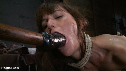 Photo number 11 from Amateur Casting Couch: Gia DiMarco shot for Hogtied on Kink.com. Featuring Gia DiMarco in hardcore BDSM & Fetish porn.