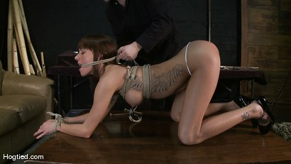Photo number 4 from Amateur Casting Couch: Gia DiMarco shot for Hogtied on Kink.com. Featuring Gia DiMarco in hardcore BDSM & Fetish porn.