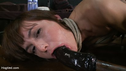 Photo number 12 from Amateur Casting Couch: Gia DiMarco shot for Hogtied on Kink.com. Featuring Gia DiMarco in hardcore BDSM & Fetish porn.