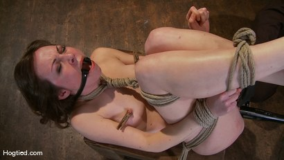 Photo number 9 from Amateur Casting Couch: Seda, A Fucking Porn Star is Born! shot for Hogtied on Kink.com. Featuring Seda in hardcore BDSM & Fetish porn.