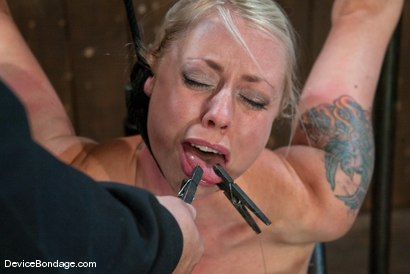 Photo number 13 from Lorelei Lee<br>Strappado, Bowling Ball, Sybian, Orgasms, not in that order.. shot for Device Bondage on Kink.com. Featuring Lorelei Lee in hardcore BDSM & Fetish porn.