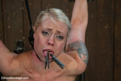 Photo number 10 from Lorelei Lee<br>Strappado, Bowling Ball, Sybian, Orgasms, not in that order.. shot for Device Bondage on Kink.com. Featuring Lorelei Lee in hardcore BDSM & Fetish porn.