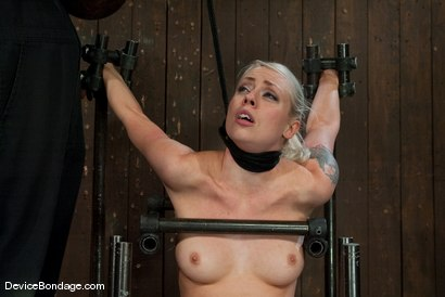 Photo number 6 from Lorelei Lee<br>Strappado, Bowling Ball, Sybian, Orgasms, not in that order.. shot for Device Bondage on Kink.com. Featuring Lorelei Lee in hardcore BDSM & Fetish porn.