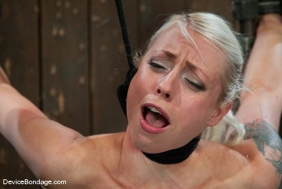 Photo number 7 from Lorelei Lee<br>Strappado, Bowling Ball, Sybian, Orgasms, not in that order.. shot for Device Bondage on Kink.com. Featuring Lorelei Lee in hardcore BDSM & Fetish porn.