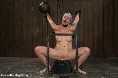 Photo number 8 from Lorelei Lee<br>Strappado, Bowling Ball, Sybian, Orgasms, not in that order.. shot for Device Bondage on Kink.com. Featuring Lorelei Lee in hardcore BDSM & Fetish porn.