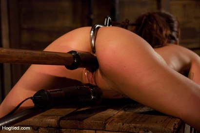 Photo number 11 from Gia DeMarco Holy Fuck! shot for Hogtied on Kink.com. Featuring Gia DiMarco in hardcore BDSM & Fetish porn.
