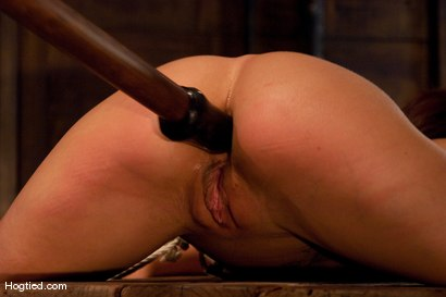 Photo number 12 from Gia DeMarco Holy Fuck! shot for Hogtied on Kink.com. Featuring Gia DiMarco in hardcore BDSM & Fetish porn.