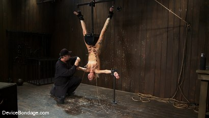Photo number 5 from Rain DeGrey<br> Q. How do you make a pain slut cry? <br>A. Bind her on a sybian UPSIDE DOWN until... shot for Device Bondage on Kink.com. Featuring Rain DeGrey in hardcore BDSM & Fetish porn.