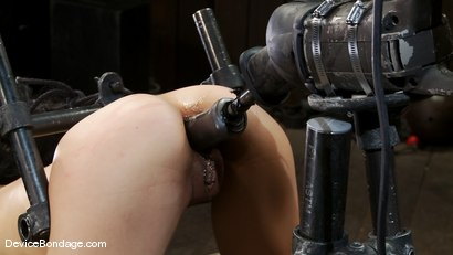 Photo number 6 from Tia Ling<br>Such a tiny ass, such a huge machine cock! shot for Device Bondage on Kink.com. Featuring Tia Ling in hardcore BDSM & Fetish porn.